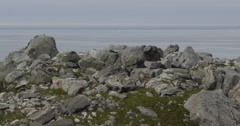 Pan of birds over jumbled boulders on arctic coast Stock Footage
