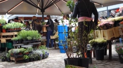 Flower and plant stall at the covered market, Torvehallerne, in Copenhagen - stock footage