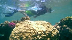 Man swims over coral reef, snorkeling in the Red sea Stock Footage