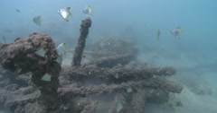 Ocean scenery pans across tracking bream across wrecked jetty, under a wharf, 4K Stock Footage