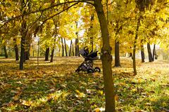 baby carriage in the park - stock photo