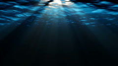 Swimming under the deep blue sea Stock Footage