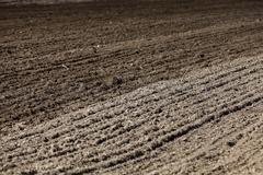 plowed land for cereal - stock photo