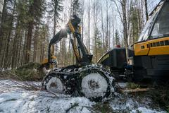 Forestry work. Image of modern log loader working - stock photo