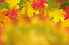 Autumn leaves frame over blurred nature background Stock Photos