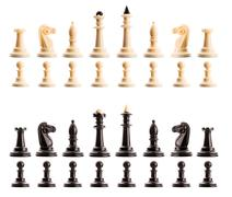 Chess figures isolated Stock Photos