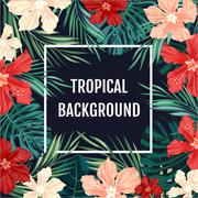 Stock Illustration of Summer tropical hawaiian background with palm tree leavs and exotic flowers