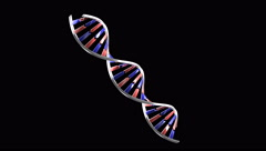 Rotating DNA molecule on black, looped Stock Footage