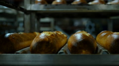 Golden Baguette On Racks at Commercial Bakery Stock Footage
