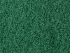 Green fibrous macro background Stock Photos