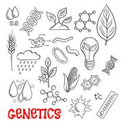 Agriculture and genetic technology sketch icons - stock illustration