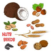 Nuts, seeds, beans and cereal sketch symbol - stock illustration