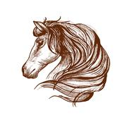 Profile of horse with flowing mane, sketch style - stock illustration