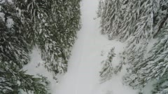 Birds eye view of footsteps in the snow on a outdoors forest snowshoe trail Stock Footage