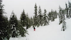 Birds eye view of a man snowshoeing in the snow filled forest wintertime Stock Footage