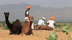Stock Video Footage of Indian men and herd camels attended the annual Pushkar Camel Mela. India