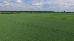 Green Shades Of Fields . Aerial View 03 Stock Footage