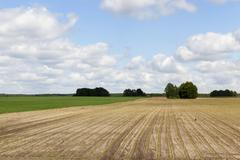 plowed for crop land - stock photo