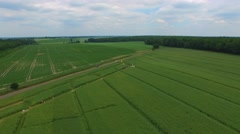 Green Shades Of Fields. aerial footage - stock footage