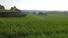 Inspiring Green Hills Stock Footage