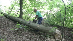 Man sawing wood chainsaw - stock footage