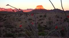 Big Bend National Park Desert Landscape at Sunset Stock Footage