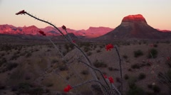 Big Bend National Park Desert Landscape at Sunset - Time Lapse Stock Footage