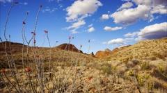 Big Bend National Park Desert Landscape - Time Lapse Stock Footage