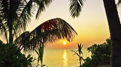 Beautiful sunset on a tropical island in the Maldives. . Stock Footage