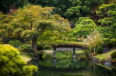 Wooden bridge over the pond autumn maple trees leaves in Rikugien garden Stock Photos
