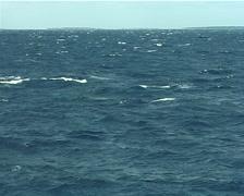 Humpback whale, Megaptera novaeangliae, UP8248 Stock Footage