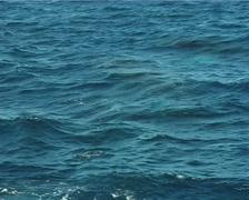 Humpback whale, Megaptera novaeangliae, UP8363 Stock Footage