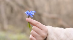 Beautiful snowdrop flowers in their hands Stock Footage