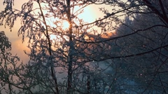 Beautiful snow. Sunset in the winter . Rough River. The snow sparkles . - stock footage