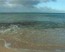 Tongan waterline, UP9530 Stock Footage