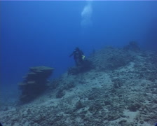 Expert diver with perfect buoyancy swimming on deep coral rubble with Stock Footage