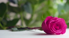 Man's hand puts a greeting card with a rose on the table. Stock Footage