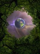 Low angle view of Earth, night sky and tree canopy - stock illustration