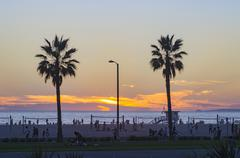 Palm trees on beach at sunset, Santa Monica, California, United States Stock Photos