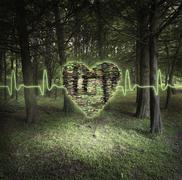Pixelated heart floating in forest Stock Photos