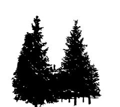Stock Illustration of Tree Silhouette Isolated on White Backgorund. Vecrtor Ill
