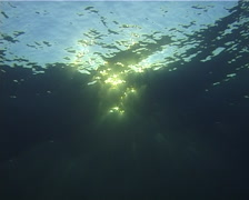 Ocean scenery surface from below, sunbeams, on water surface, at sunset, UP11029 - stock footage