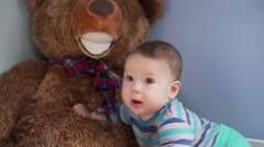 Cute little boy playing with the big toy bear and has a lot of fun     Stock Footage