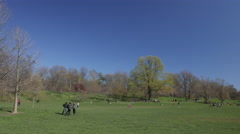 Brooklyn New York's Prospect Park Stock Footage