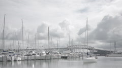 Auckland City of Sails with Harbour Bridge view Stock Footage
