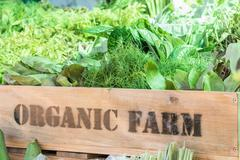 Fresh organic produce in wooden box Stock Photos