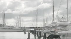 Auckland city of sails marina view Stock Footage