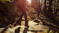 People Hike Forest Woods Trail 5K HD Stock Video Footage - stock footage