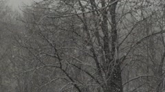 Snow falls abundantly during snowfall in winter Stock Footage