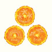Vector watercolor orange slice circles, hand drawn doodle elements. Stock Illustration